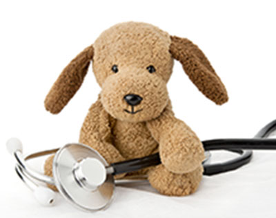 SDog-with-Stethoscope-Home-Page-Photo